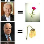 Obama mccain funny 1226271676 81452